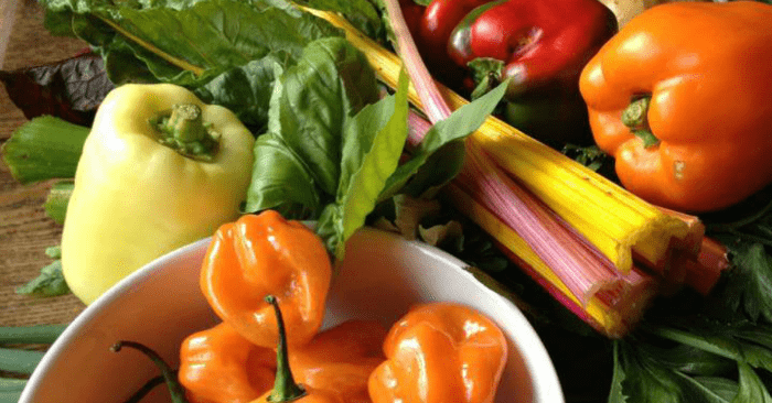 Consider bringing local fruits and veggies for a farm fresh vacation!