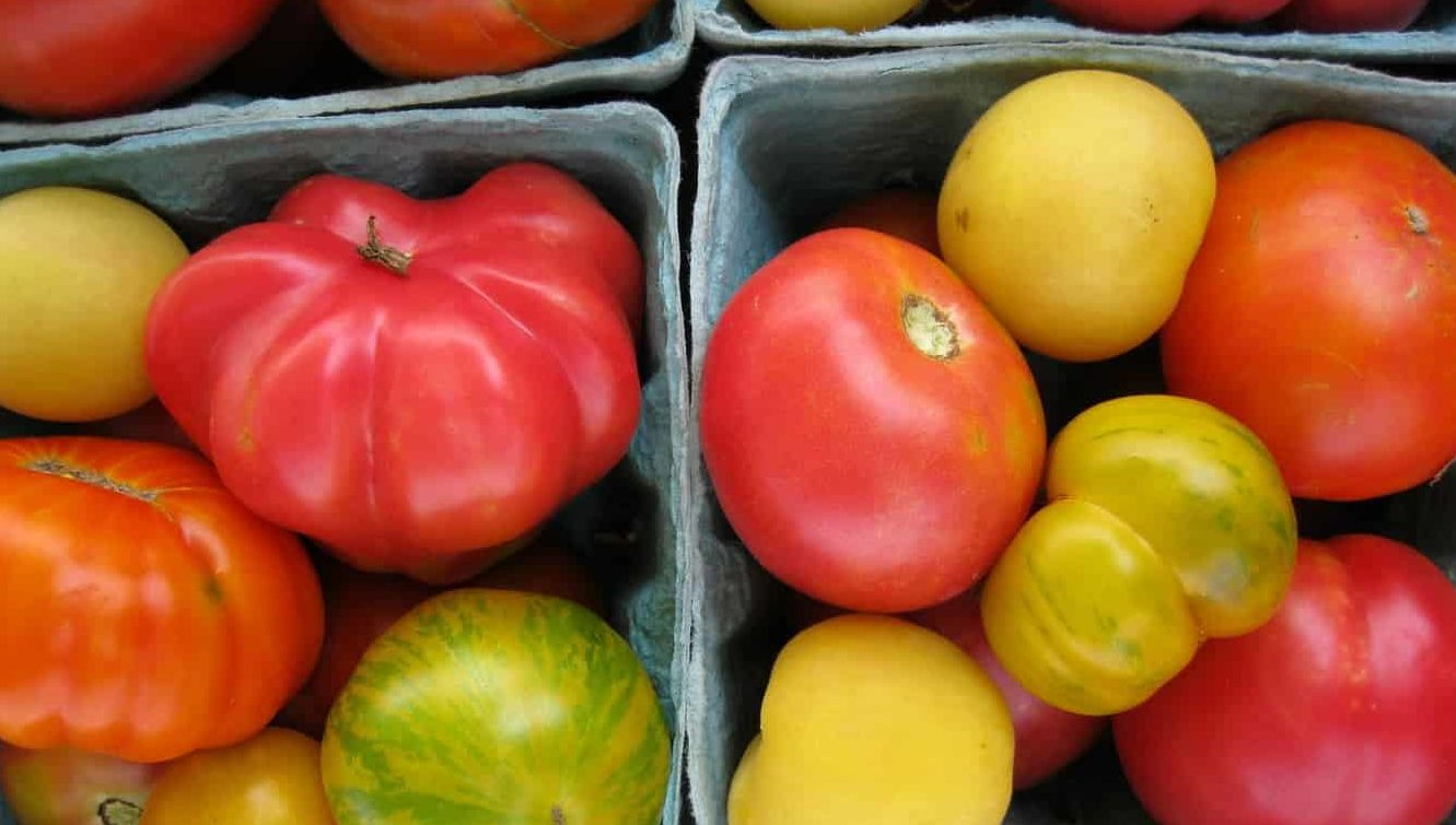 A CSA is where you pay one up-front cost in spring and then get in-season produce on a weekly basis throughout growing season.