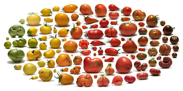 Uli Westphal: Fruit Au Naturale
