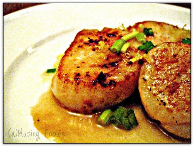 Pan-seared scallops on a plate.