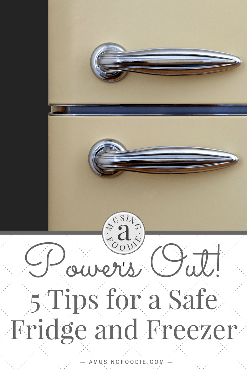 Use these tips for a safe fridge and freezer to help save your food when it looks like you may lose power in a storm.
