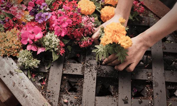 Ad: How to make a vertical garden with The Home Depot Garden Club | #DigIn