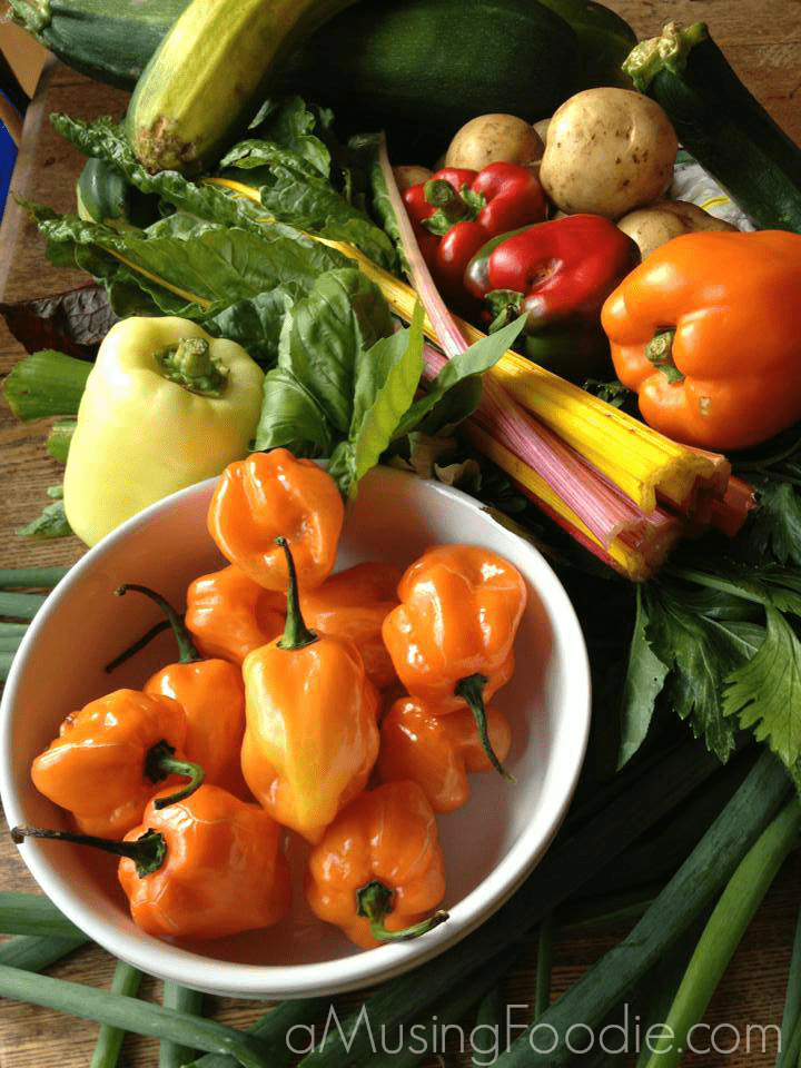 Farm vegetables.