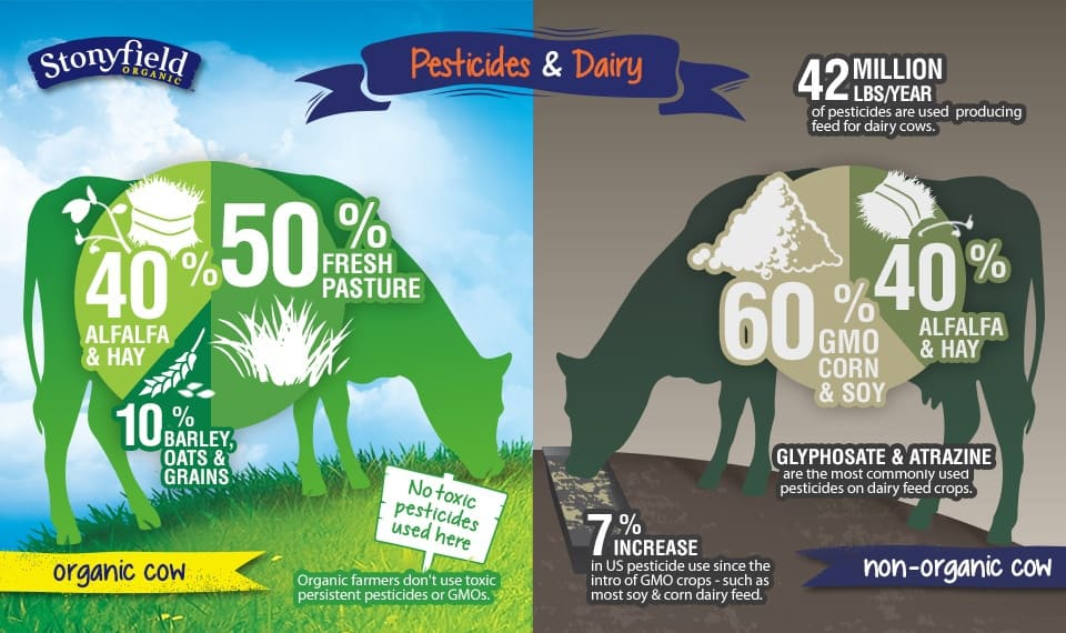 Pesticides and Dairy Infographic