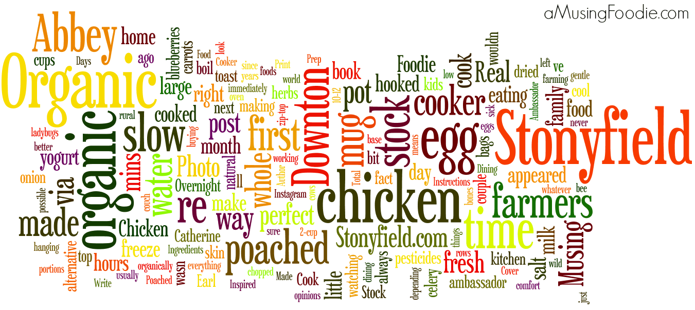 (a)Musing Foodie 2013 Wordle