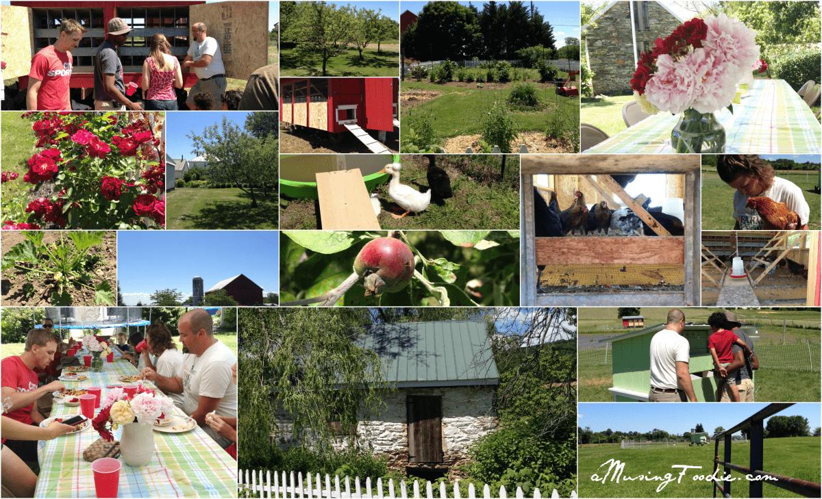 Hometown Harvest Farm Lunch