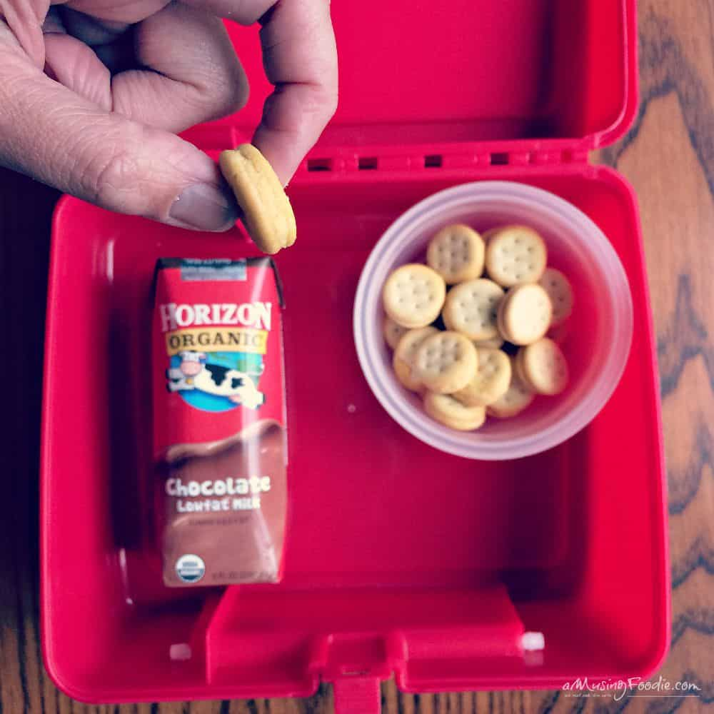 Packing A Tasty School Lunch - 5 Tips!