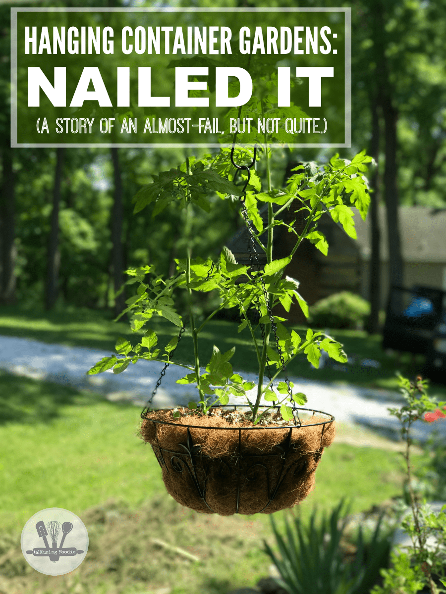 Hanging container gardens: NAILED IT! (A story of an almost-fail, but not quite.)