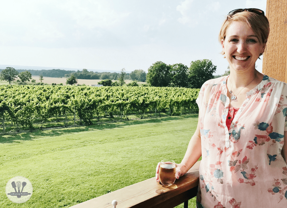 If you're a fan of wine, beer, hard cider, gin and stunning scenic backdrops, then a vacation at Seneca Lake in New York is the place for you!