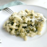 Spinach Dip Pasta